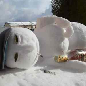 Obrázek '-snehulic-'