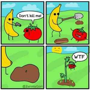 Obrázek 'Bananamurder'