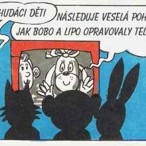 Obrázek 'BoboaLipo'