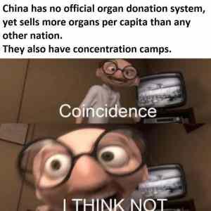Obrázek 'Chinacamps'