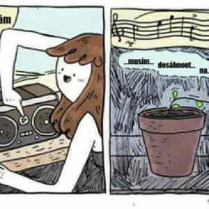 Obrázek 'Countrymusic'
