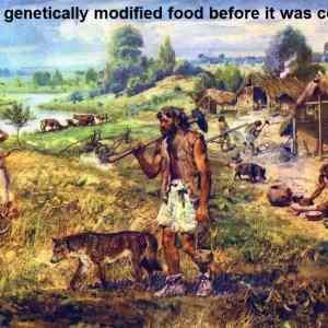 Obrázek 'GMO'