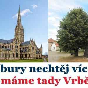 Obrázek 'Salisburynechtejvice'