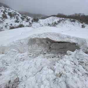 Obrázek 'Snowfossil'