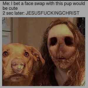 Obrázek 'Thecutestfaceswap'