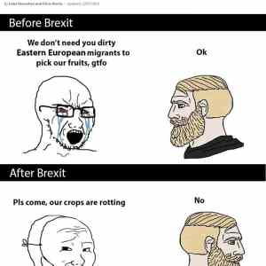 Obrázek 'Two-stages-of-Brexit'