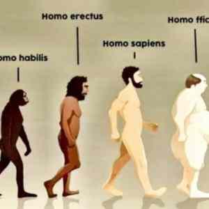 Obrázek 'evolucedokoncena'