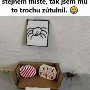 Obrázek 'faktjsemdospeli-pavoucekmaobyvacek'
