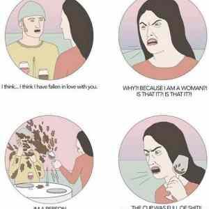Obrázek 'feminism2020540'
