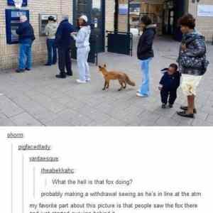 Obrázek 'foxletanig'