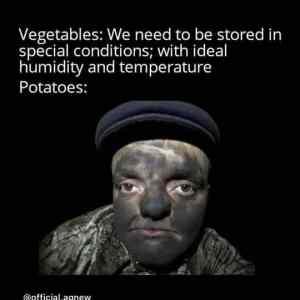 Obrázek 'potatoes1'