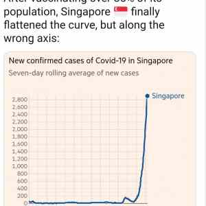 Obrázek 'singaporeflattened'