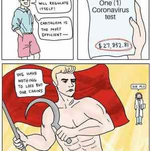 Obrázek 'zdravotnickejkapitalizmuz'