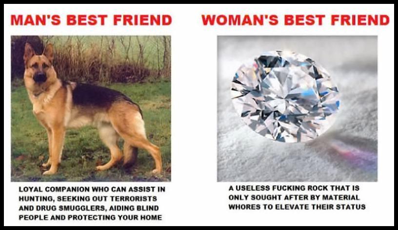 Obrázek -BestFriend-