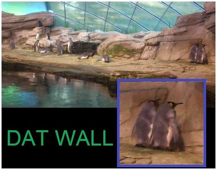 Obrázek -Datwall-23.10.2012