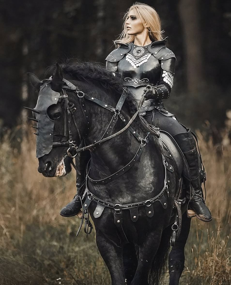 Obrázek -Stallion-