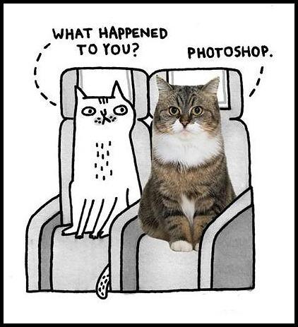 Obrázek -Whathappened-05.10.2012