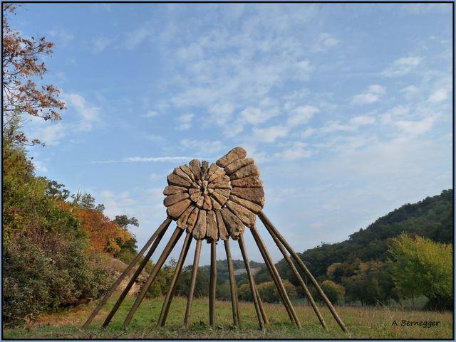 Obrázek -Ammonite-