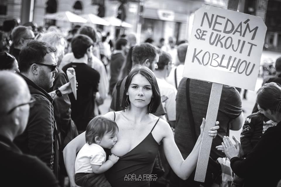 Obrázek -Pardubice-