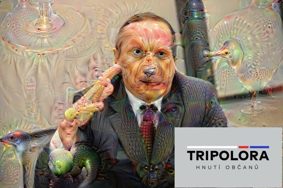 Obrázek -tripolora-