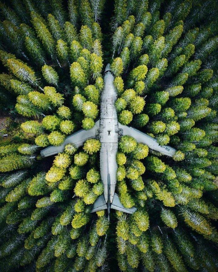 Obrázek A-abandoned-plane-in-an-Indonesian-forest