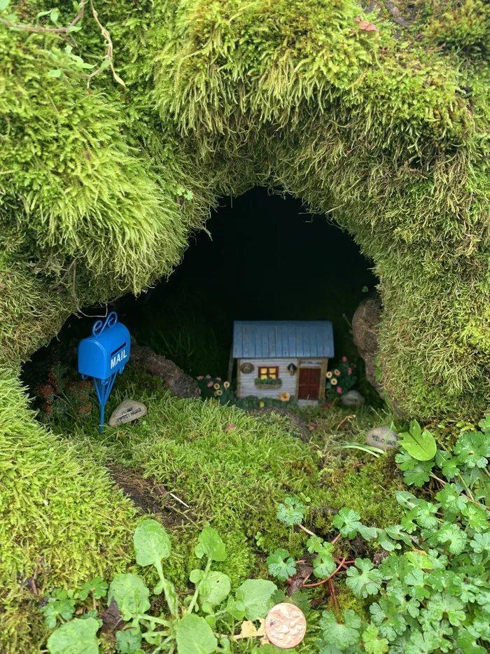 Obrázek A-tiny-house-in-a-mossy-tree-stump