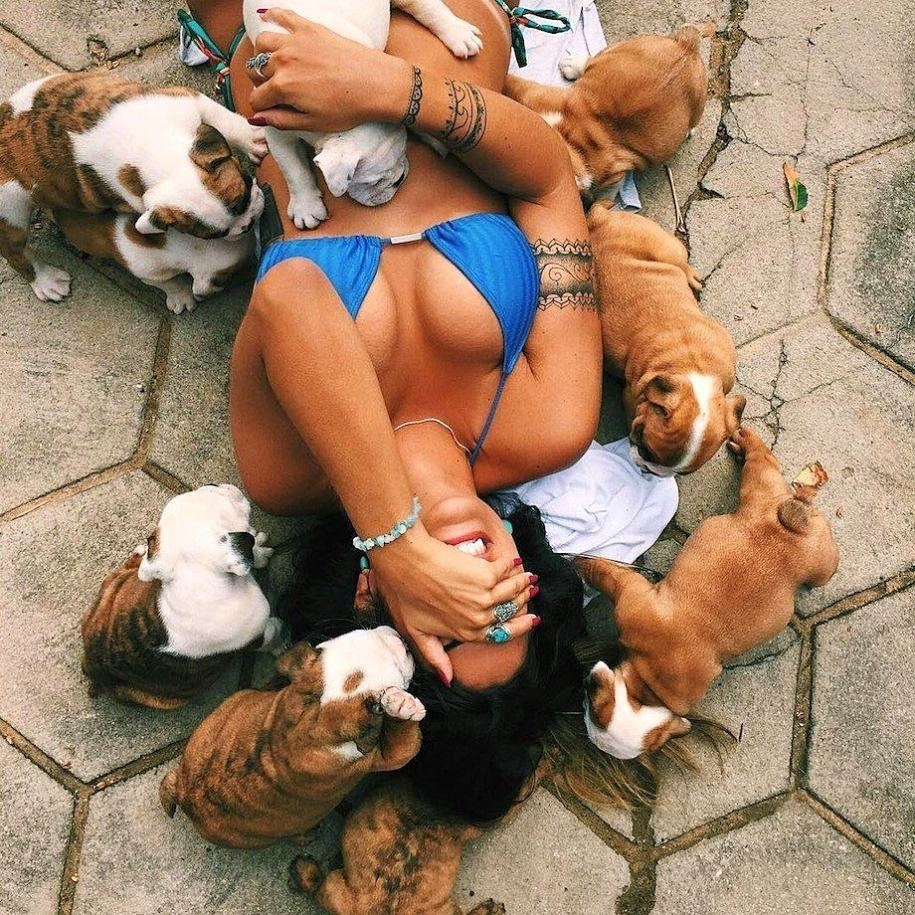 Obrázek ALLThesePuppies