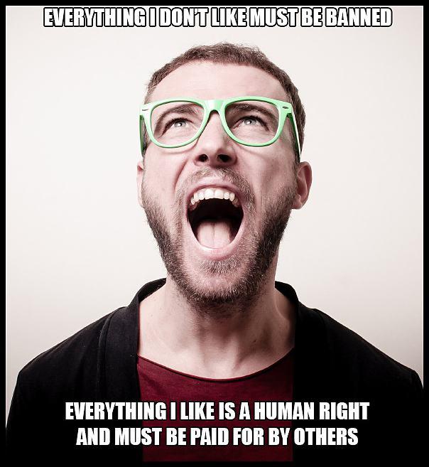 Obrázek AngryLiberalLogic