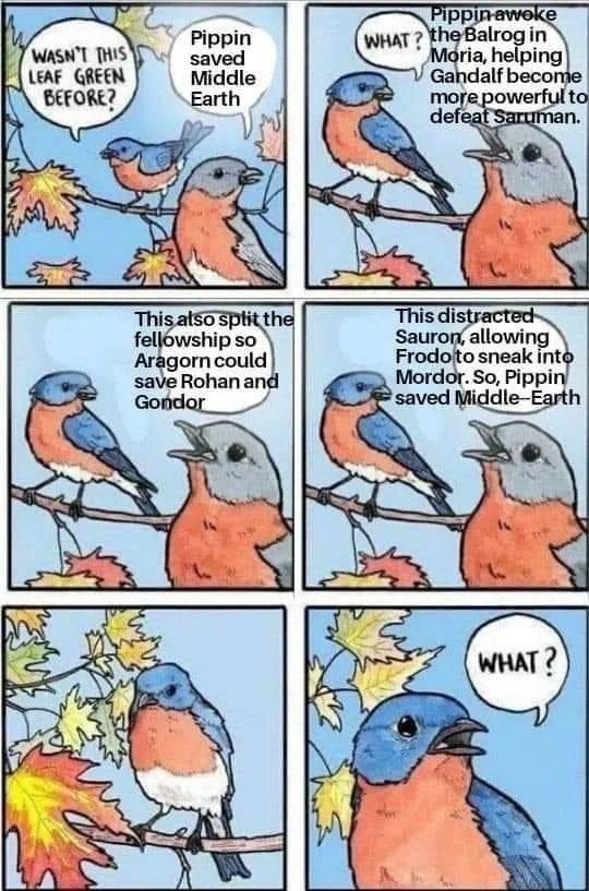 Obrázek Bird-Noise