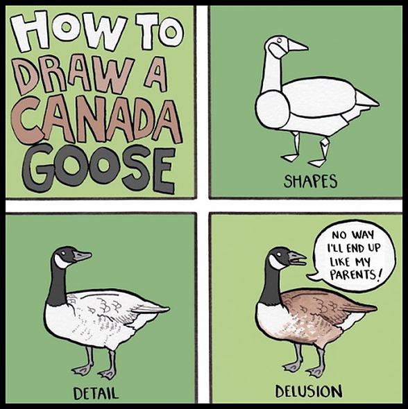 Obrázek CanadaGoose