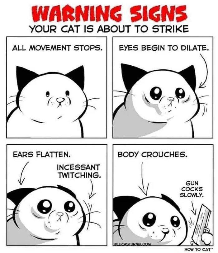 Obrázek Cat-owners-beware
