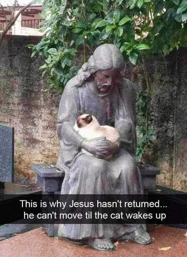 Obrázek Catholic