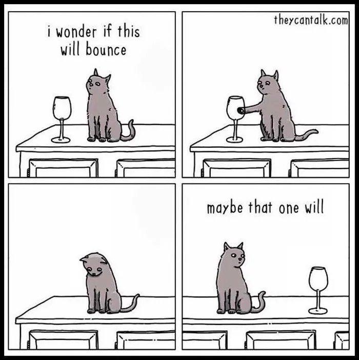 Obrázek Cats-are-assholes65