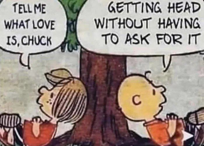 Obrázek Charlie-Brown-with-the-love-answer-for-Peppermint-Patty