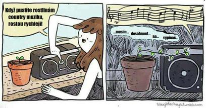 Obrázek Countrymusic