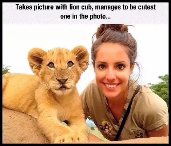 Obrázek CuteLionCub