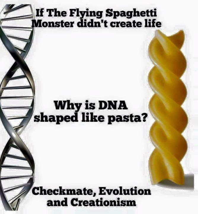 Obrázek DNA