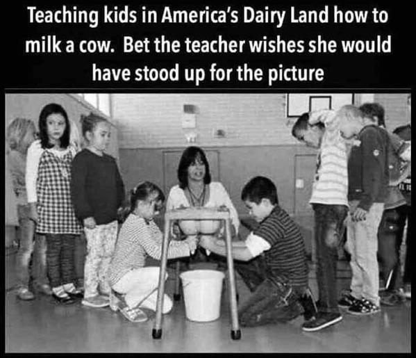 Obrázek DairyLandLesson