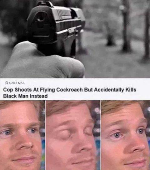 Obrázek Damn-I-also-hate-cockroaches