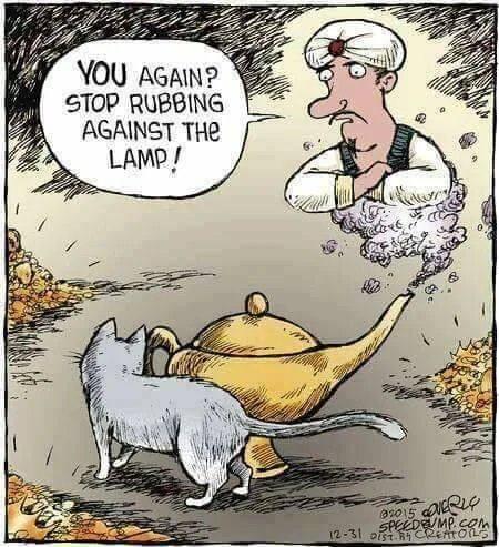 Obrázek Derpy-comic