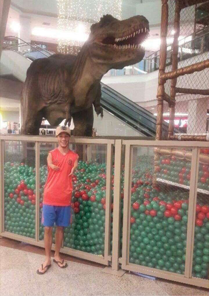 Obrázek Dinosaurus