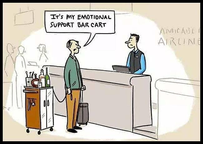 Obrázek EmoSupBarCart