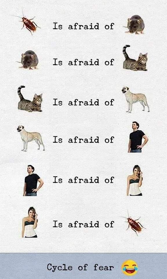 Obrázek Fears