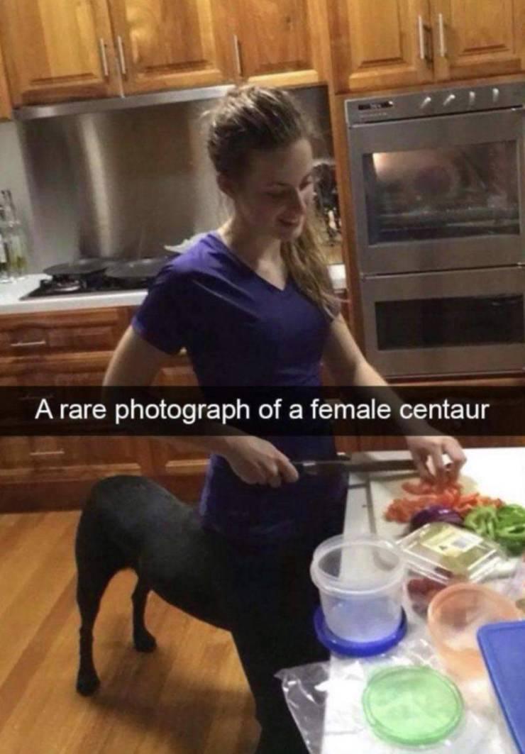 Obrázek Femalecentaur