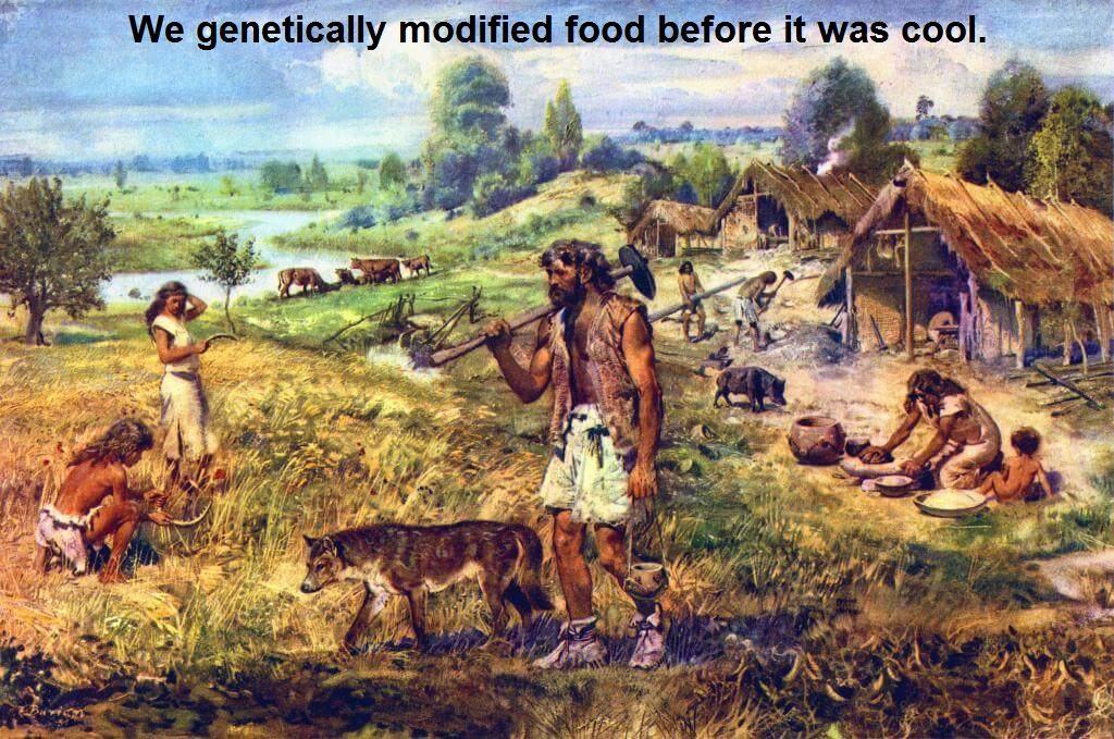 Obrázek GMO