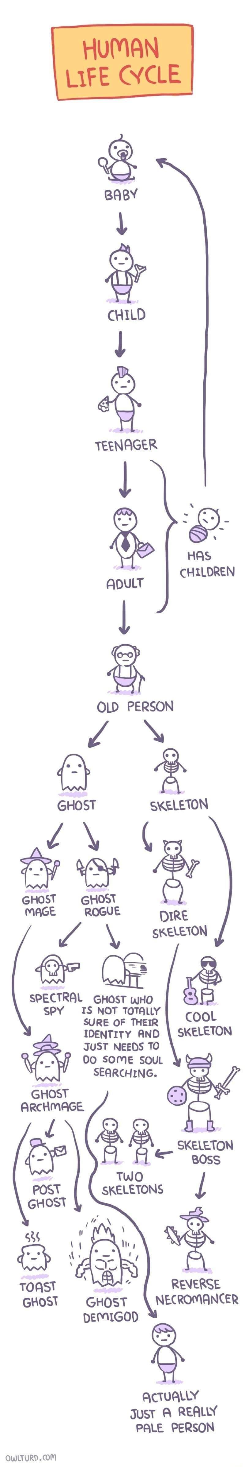 Obrázek Ghostevolution