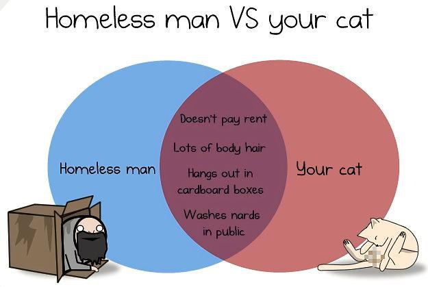 Obrázek Homelessmanvsyourcat