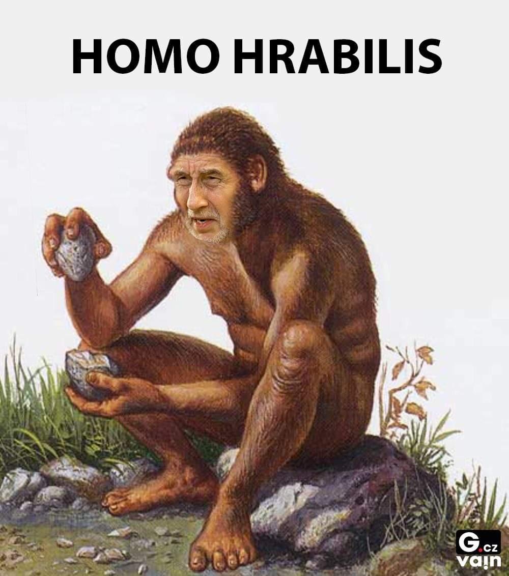 Obrázek Homohrabilis