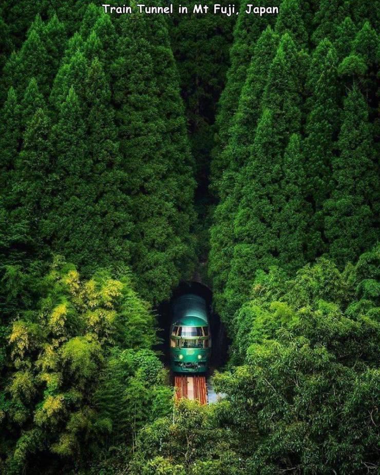Obrázek Japanesetraintunnel