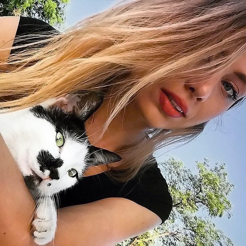 Obrázek KittyCatPic